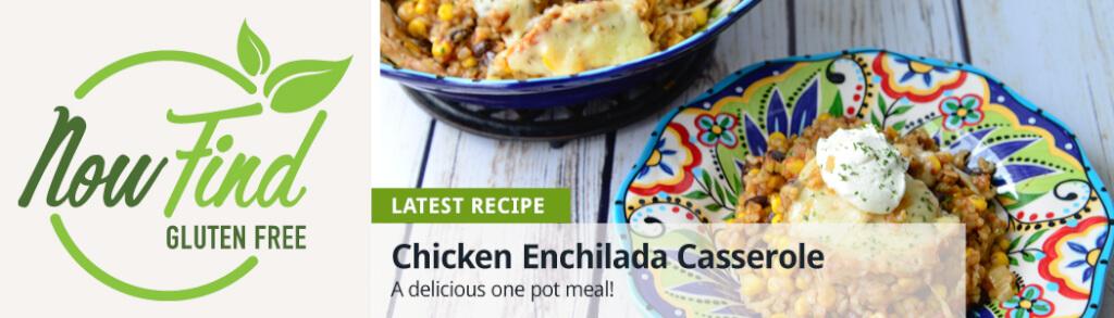 NFGF Banner - chicken enchilada